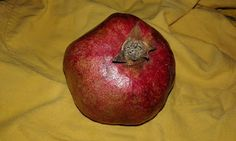 How to deseed a pomegranate Homemade Cosmetics, Pomegranate, Helpful Hints, Notes, Apple, Tips, Blog, Useful Tips, Grenada