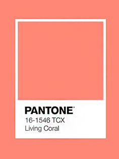 I like the shade of coral it pops Coral Colour Palette, Pantone Colour Palettes, Coral Color, Colour Schemes, Pantone Color, Pantone Orange, Paleta Pantone, Color Harmony, Color Psychology
