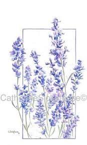 """Képtalálat a következőre: """"lavender vector"""""""