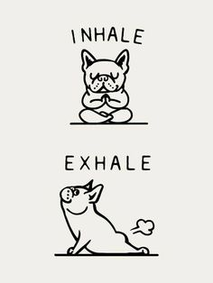 Inhale Exhale Frenchie Art Print by Huebucket - Animals / Babies / Cuten . - Inhale Exhale Frenchie Art Print by Huebucket – Animals / Babies / Cuten …, - Funny Quotes, Funny Memes, Jokes, Funny Food Puns, Funny Positive Quotes, Quotes Inspirational, Life Quotes, Funny Illustration, The Words