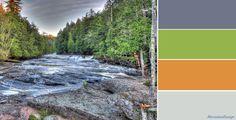 Autumn Frosty Woodland Colour Palette