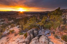 Share the Experience | bryce Canyon national park