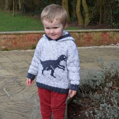 Dinosaur Sweater, Girl Dinosaur, Aran Knitting Patterns, Baby Knitting, Patons Wool, Velociraptor Dinosaur, Knitted Flowers, Rico Design, How To Start Knitting