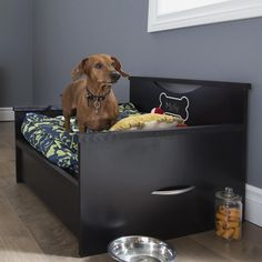 Dog Bed with Storage and Cushion Cover       >>> Deal of the day    http://amzn.to/2bXxXNb