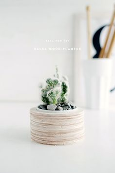 Fall For DIY Balsa Wood Planter project. A tutorial to make this simple planter. Click through for DIY.