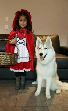 We did this once with our wolf-husky hybrid and the little girl next door.