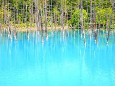 北海道には、他にない感激の観光スポットが一杯!そんな絶景スポットを厳選して一挙ご紹介します。1.旭岳、沼の平【旭川】北海道一の山「旭岳」。旭川にあるこの山に「沼の平」と呼ばれる大小の沼や池塘が広がる高層湿原が広がっています。この写真は紅葉時期の旭岳です。9月中旬くらいがピークで多くの観光客が訪れる、あまり旅行雑誌でも紹介されない、意外な穴場絶景スポットです。 関連記事 この秘境感ハンパない!北海道・旭岳の「沼の平」が絶景すぎる! ■基本情報 ・名称:沼の平(大雪山の旭岳) ・住所:北海道上川郡上川町層雲峡 ・オススメの時期:9月中旬 ・公式サイトURL: 2.神の子池【清里町...