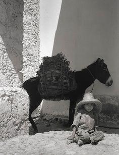 Boy and Donkey 1933  by Paul Strand