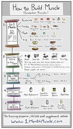 nutrition healthy food weight loss fitness tips How to Build Muscles - Foundation Principles. Remember to check my site out for more tips Fitness Workouts, Fitness Tips, Fitness Motivation, Health Fitness, Workout Tips, Leg Press Workout, 12 Week Workout Plan, Enjoy Fitness, Lifting Motivation