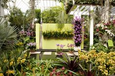 It's ready, we're ready, and I hope you're ready! The Orchid Show: Key West Contemporary, now open to the public.