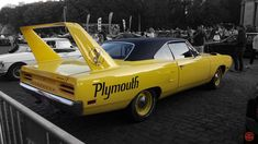 Plymouth Road Runner Superbird by JBPicsBE on DeviantArt Old Muscle Cars, American Muscle Cars, Dodge Charger Daytona, Dodge Daytona, Plymouth Daytona, Plymouth Superbird, Car Man Cave, Exotic Sports Cars, Chrysler Jeep