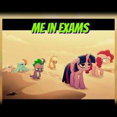 that's soo me Mlp Memes, Mlp Pony, Twilight Sparkle, Rainbow Dash, Funny Relatable Memes, Evo, Ponies, My Little Pony, Fanart