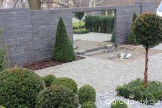 Ogród z lustrem - strona 134 - Forum ogrodnicze - Ogrodowisko