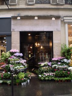 Paris: Flower Shop by chrispez, via Flickr