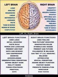 Left Brain vs Right Brain. Importance of Improving the Right Brain Skills - Awaken Mindset Left Vs Right Brain, Anatomy And Physiology, Brain Anatomy, Brain Injury, Head Injury, Nclex, Brain Health, Healthy Brain, Mental Health