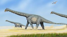 A list of the most notable dinosaurs and prehistoric animals discovered in the state of New Mexico, including Coelophysis, Nothronychus, Parasaurolophus, and more. Largest Dinosaur, Dinosaur Types, Dinosaur Fossils, Dinosaur Art, Tanzania, Dinosaure Herbivore, Walk The Earth, Extinct Animals, Beast
