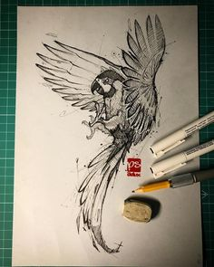 Fineliner Ink and Pencil Animal Drawings. Click the image, for more art by psdelux zeichnen Ink and Pencil Animal Drawings. Pencil Drawings Of Animals, Animal Sketches, Drawing Sketches, Art Drawings, Parrot Drawing, Parrot Painting, Cervo Tattoo, Parrot Cartoon, Parrot Logo
