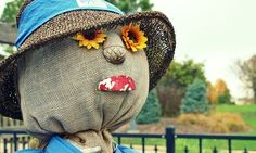 Free Image on Pixabay - Fall, Scarecrow, Sunflowers
