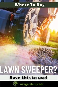 Now, you've decided that you need a lawn sweeper or leaf sweeper. As a passionate gardener, here is a list of the best leaf sweeper reviews of 2020 for you!