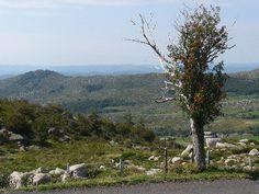 Les Cévennes et son Parc National