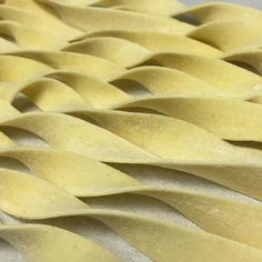 Amber waves of grain. #freshpasta