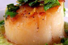 Seared Sea Scallops with Gingered Pea Purée and Cilantro Gremolata ...