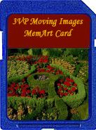 Flower Beds moving images memart card for the digital picture frame. Find previews @ 3vpmiart.com