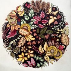 Johanna Basford | Picture by Julie Holden | Colouring Gallery