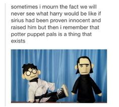 Yeah, it's basically what Harry would be like if Sirius HAD raised him