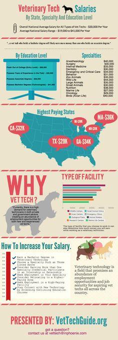 Vet Tech Salaries Graphic - Vet Tech Guide