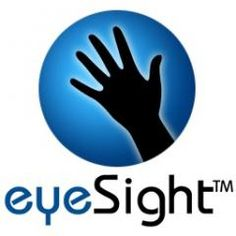 EyeSight Gesture Recognition Technology -  [Click on Image Or Source on Top to See Full News]