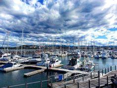 Más que ningún otro día mi corazón ha estado en Coffs Harbour!!!
