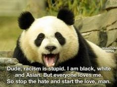 """Panda says: """"Dude, racism is stupid. I am black, white, and Asian, But everyone loves me! We Are The World, In This World, I Smile, Make Me Smile, Faux Profil, Make Love, Panda Love, Happy Panda, Just For Laughs"""