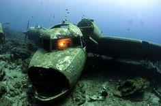 """Se facessimo un'immersione subacquea ricreativa nelle acque dell'Oceano Atlantico  potremmo incontrare vecchie navi da guerra, aerei, carri armati, vagoni di treni o di metropolitana. Tutti questi mezzi di trasporto, infatti, sono stati gettati """"deliberatamente"""" nell'oceano, ma questa volta non si tratta di un atto di vandalismo, ma di un'opera progettata per favorire l'ecosistema marino! Questi relitti, infatti, sono diventati un paradiso per i subacquei e gli organismi marini. Sono…"""