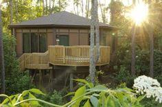 Review: Treehouse Villas at Walt Disney World