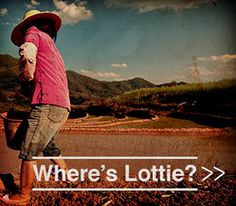 Where in the world is Lottie Moon? http://www.commissionstories.com/asia/interactives/view/flat-lottie-journeys