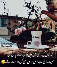 Pro Extender in Pakistan Tea Lover Quotes, Chai Quotes, Hours In A Day, Girly Quotes, Try Something New, Girl Photography Poses, Jaba, V60 Coffee, Urdu Poetry