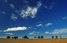 Das heutige Sonntagswetter, ...  ist bei uns hier etwas grau und trüb. Wogegen das Freitagswetter vorgestern noch gut sonnig war. :-)