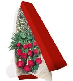 Βελούδινο Κουτί μέ τριαντάφυλλα Tree Skirts, Christmas Tree, Holiday Decor, Home Decor, Teal Christmas Tree, Decoration Home, Room Decor, Xmas Trees, Christmas Trees