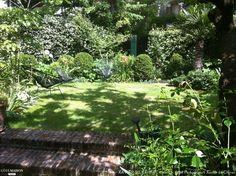 Un très petit jardin planté d'un abricotier, de roses, d'iris, de buis avec une terrasse en briques et une allée en gravier