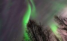 Auroras boreales desde Kiruna, Suecia – El Universo Hoy