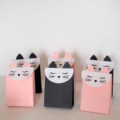 boîtes cadeaux chat