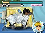 Jak się myje psy ? Trzeba iść z nimi d salonu jak w tej grze:) - http://grajnik.pl/dladzieci/gry-salon-dla-ps%C3%B3w/