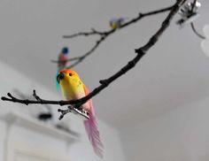 Lintupuu kotona