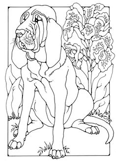 Coloring page bloodhound - coloring picture bloodhound. Free coloring sheets to… Horse Coloring Pages, Dog Coloring Page, Free Coloring Sheets, Free Adult Coloring Pages, Coloring Pages To Print, Colouring Pages, Coloring Books, Saint Hubert Chien, Pencil Drawings Of Animals