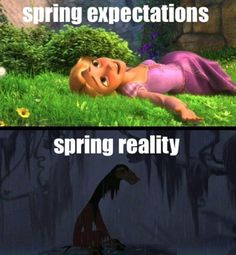"""At Least It Isn't Snowing Anymore! - Funny memes that """"GET IT"""" and want you to too. Get the latest funniest memes and keep up what is going on in the meme-o-sphere. Pixar, No Kidding, Expectation Vs Reality, Disney Memes, Funny Disney, I Love To Laugh, The Villain, Disney Love, Disney Stuff"""