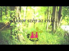 Akkor szép az erdő... - YouTube Winnie The Pooh, Ted, Disney Characters, Fictional Characters, Folk, Projects To Try, Green Day, Youtube, Winnie The Pooh Ears