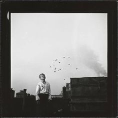 Shoe Shine Boy [Mickey at a rooftop pigeon coop.], Museum of the City of New York. Stanley Kubrick Photography, Ville New York, King Book, Museum Collection, My Tumblr, Best Photographers, Pigeon, Street Photography, White Photography