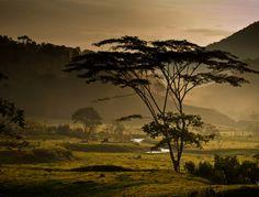 "Cocorná, Department of Antioquia, Colombia. ""Nada que envidiarle a África"" (Nothing to envy Africa) photo by Leonardo Arango Baena."