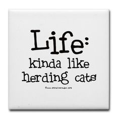 """Life - like Herding Cats Tile Coaster by CafePress . $10.50. Ceramic. Not for use with abrasive cups and mugs. Dishwasher safe. 4.25"""" x 4.25"""" and 1/6-inch thick. Four felt pads protect your furniture from scratches. Life - kinda like herding cats - this humorous saying on this great item from StudioGumbo makes a fun gift for that special person in your life who can identify"""
